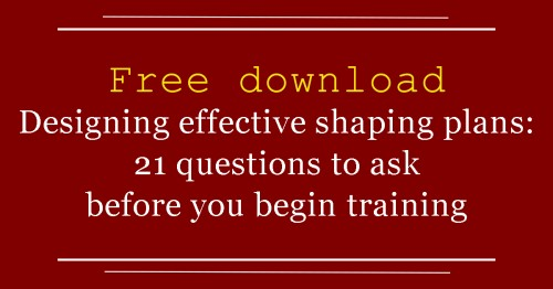 LM 21 shaping questions