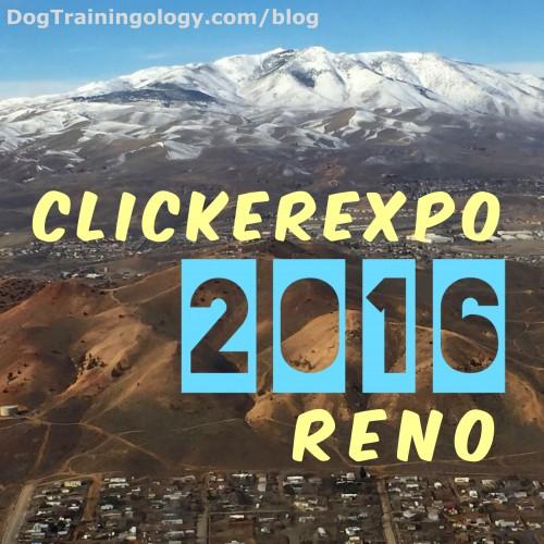 The mountains in Reno at ClickerExpo  2016